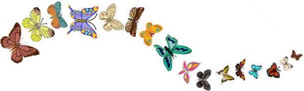 Butterflies floating (horiz)